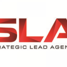 Stategic Lead Agency's picture